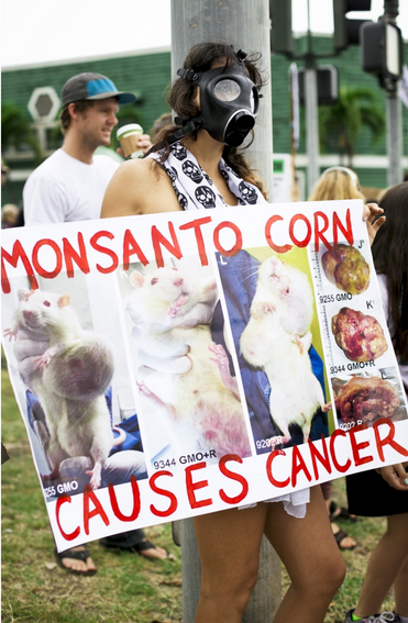 Anti-GMO protesters use scare tactics and misinformation to conscript followers and coerce elected officials.